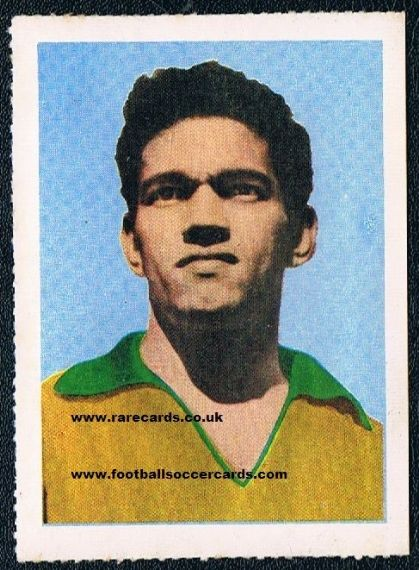 Garrincha blue 7 Aquarela